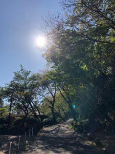 環境省断熱リノベ補助金、横浜市エコリノベ補助金はじまりました!① ~断熱とは?